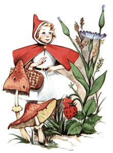 little-red-riding-hood-1462741_1920